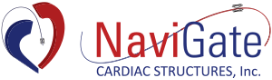 NaviGate Cardiac Structures, Inc.
